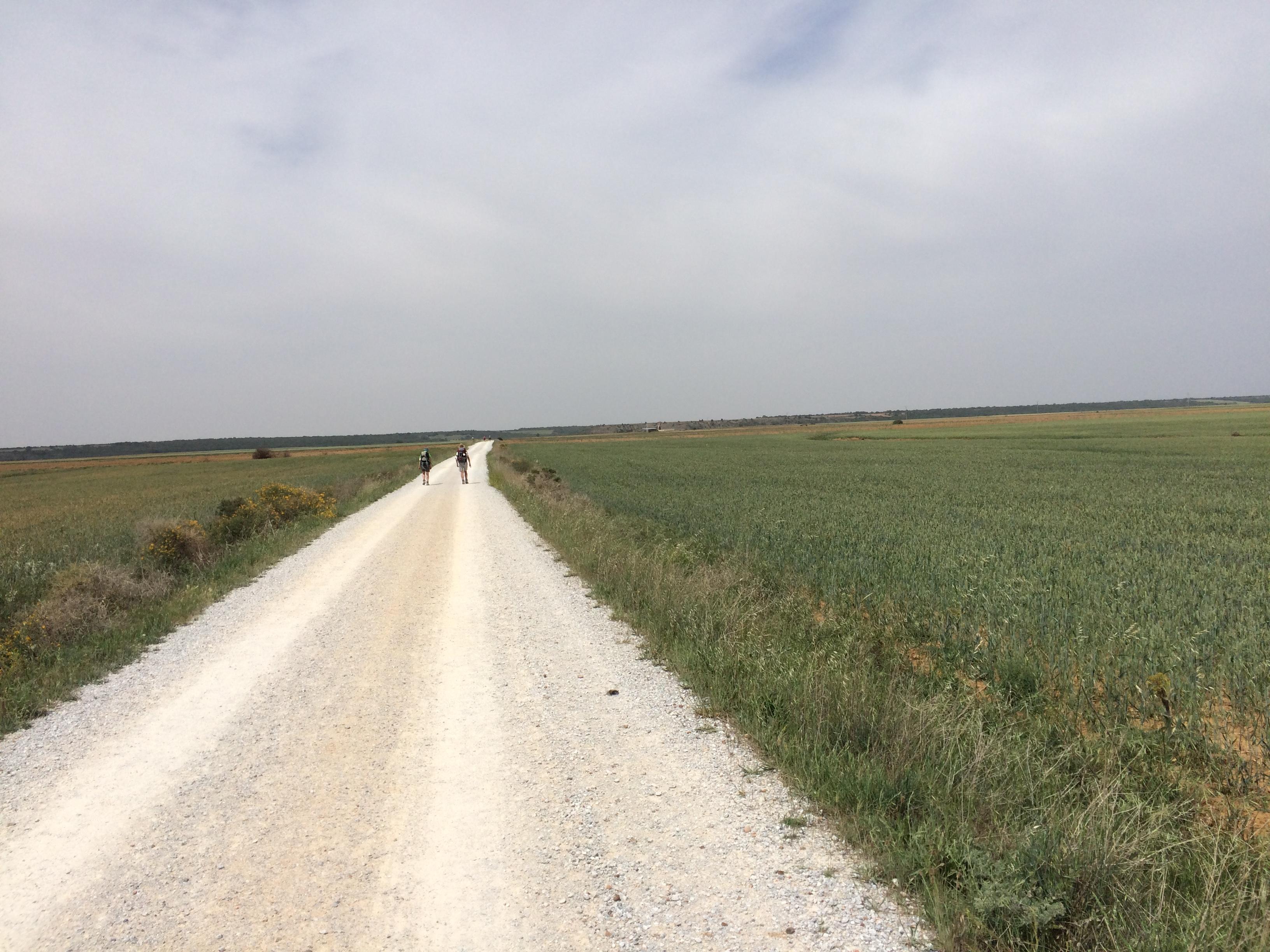 Day 23 - Carrión de los Condes to Calzadilla de la Cueza - May 27, 2017